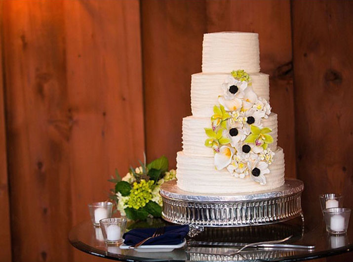ashley-jameson-wedding-cake-4