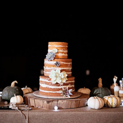breecia-conrad-wedding-cake-1