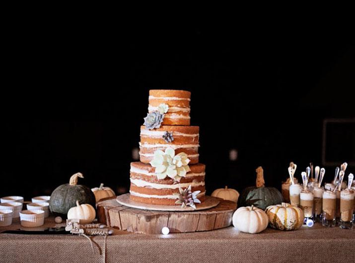 breecia-conrad-wedding-cake-1